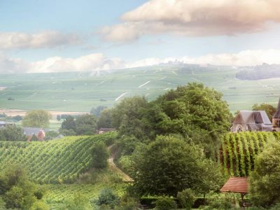 3515513362732-francia-ardenne-panorama-1.jpg