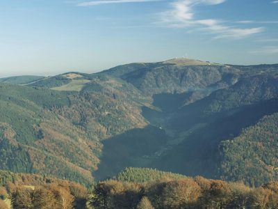 homewebwww.travel-friends.itvhoststestwp-contentuploads202002germania-foresta-nera-panorama-4.jpg